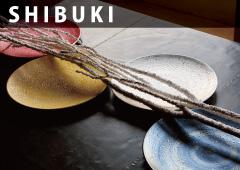 SHIBUKI